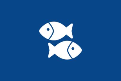 Fish Wholesalers