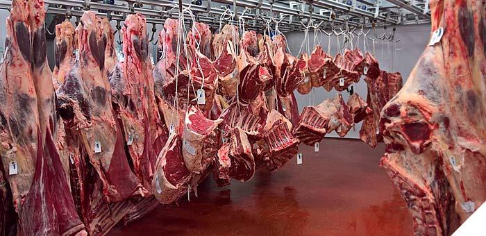 Hanging beef